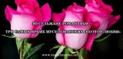 МУСУЛЬМАНЕ-РОМАНТИКИ ТРИ САМЫХ ЯРКИХ МУСУЛЬМАНСКИХ «ПОЭТОВ ЛЮБВИ»